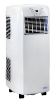 NewAir AC-10100E Portable Air Conditioner