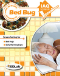 Bed Bug Test Kit