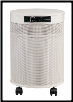 Airpura T600 Smoke Removal Air Purifier